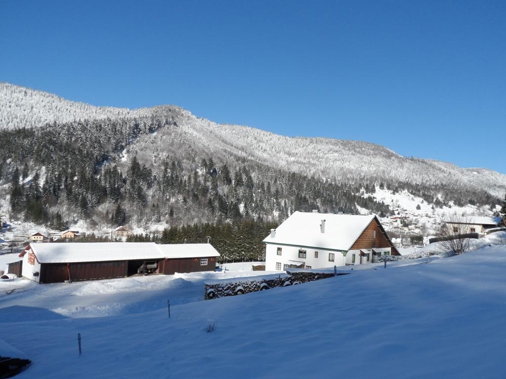 La ferme dans son environnement en hiver (2)