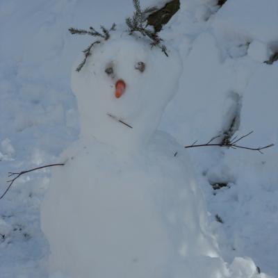 un visiteur saisonnier