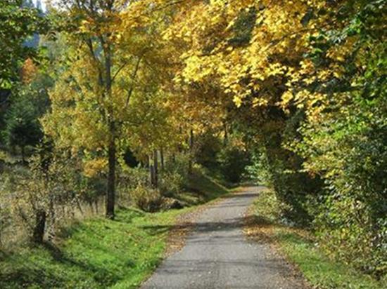 Chemin du Parc des ballons des Vosges