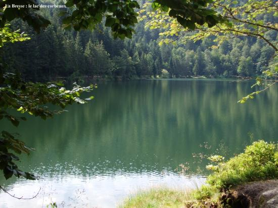 Le Parc des ballons des Vosges